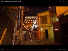 Nippon Wandering 35 04