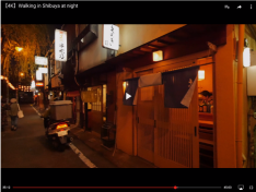 Nippon Wandering 35 12
