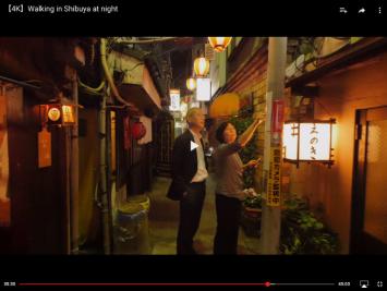 Nippon Wandering 35 35